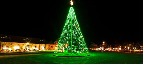 Cuero's Christmas in the Park tree wide shot