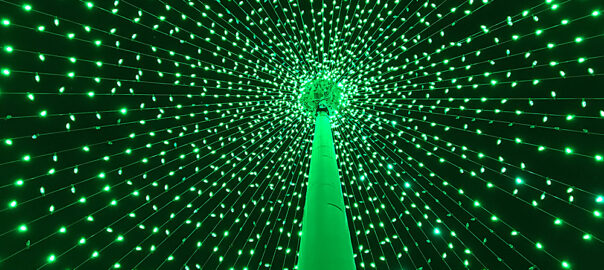 Photo of inside of Flagpole Christmas Tree
